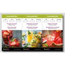 Monin Limonádé lap 6 limonádét tartalmaz- Asztali Álló (Új 2018 as)